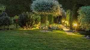 Professional Landscape Lighting Kits